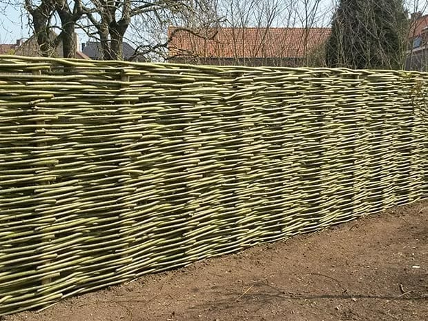 Woven willow fencing - The realization